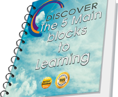 The Five Main Blocks to Learning - The FerrisWheel.or